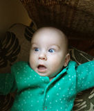 Open-eyed and surprised little baby boy in green clothe. Amazing Royalty Free Stock Photos