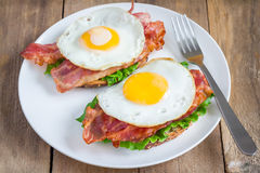 Open face sandwich Royalty Free Stock Images