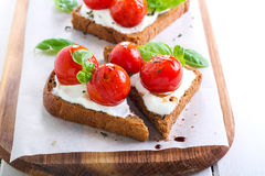 Open-face tomato and cheese bruschetta Royalty Free Stock Photos