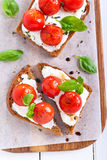 Open-face tomato and cheese bruschetta Royalty Free Stock Images