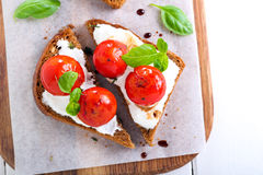Open-face tomato and cheese bruschetta Stock Photography