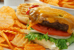 Open faced cheeseburger Stock Image