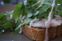 Smoked eel open faced sandwich with arugula and dressing royalty free stock photography