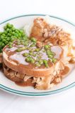 Open faced hot chicken sandwich Royalty Free Stock Image