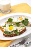 Open-Faced Sandwich with Fried Egg. Closeup of delicious open-face sandwiches with feta cheese, arugula, and fried quail eggs Stock Photos