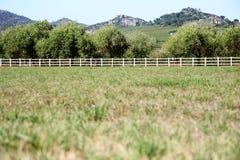 Open farm field Royalty Free Stock Photos