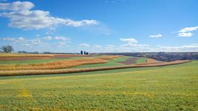 Open Farmland Country in Wisconsin. Open farm fields with rows of corn and soybeans in the countryside of Wisconsin stock photography