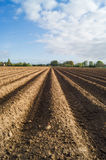 Open farmland in Doetinchem, Holland/ Netherlands. Stock Photography
