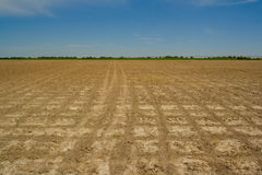 Open farmland Stock Images