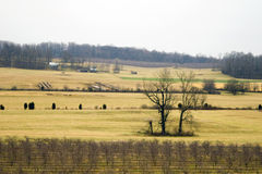 Open Farmland - Virginia Stock Photo