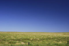 Open field. Central queensland of a grass plain on a gentle rolling hills giving feeling of complete freedom and space royalty free stock photos