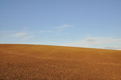 Open field Royalty Free Stock Images