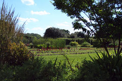 Open field blue sky with garden framed Royalty Free Stock Photo