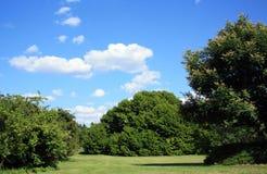 Open field blue sky Royalty Free Stock Photo