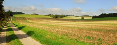 Open field and country road. A landscape view of an old dirt road running along the side of an open field on a sunny day royalty free stock images