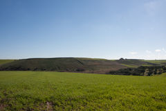 Open field in countryside in spring Stock Image