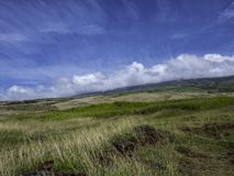 Open field on a sunny day. Open field and mountains on a sunny day in Maui Hawaii Royalty Free Stock Photo