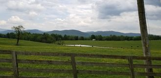 Open field with trees. Open field with single tree to the left and some cows to the right wooden old fence in the foreground tress and mountain in the background stock photos