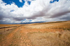 Open field in Western Cape. South Africa Stock Photo
