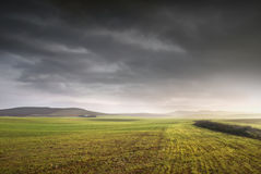 Open Fields. Landscape of a wheat field with a country house on the background and a dramatic sky Royalty Free Stock Image