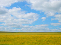 Open fields Royalty Free Stock Photos