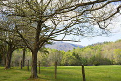 Open fields of Cades Cove in spring. stock photography