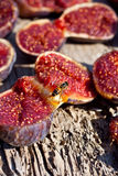 Open figs Stock Images