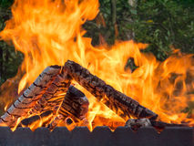 Open fire for barbecue Stock Images