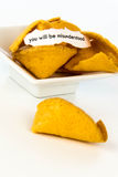 Open fortune cookie - YOU WILL BE MISUNDERSTOOD Stock Photos
