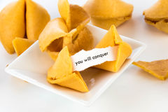 Open fortune cookie - YOU WILL CONQUER. Open fortune cookie with strip of white paper - YOU WILL CONQUER Royalty Free Stock Photography