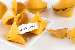 Open fortune cookie - YOU WILL CONQUER. Open fortune cookie with strip of white paper - YOU WILL CONQUER Stock Photography