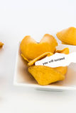 Open fortune cookie - YOU WILL SUCCEED Royalty Free Stock Photos