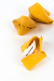 Open fortune cookie - YOU WILL SUCCEED Royalty Free Stock Image