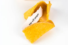 Open fortune cookie - YOU WILL SUCCEED Royalty Free Stock Photo