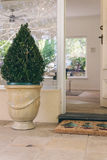 Open front door with welcome mat and decorative topiary Stock Photography