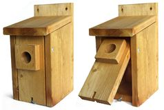 Open fronted nest box Stock Photos