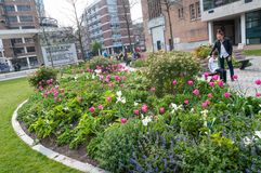 Open garden in the city of various colors stock photo