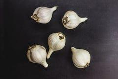 Open garlic on black background royalty free stock photos