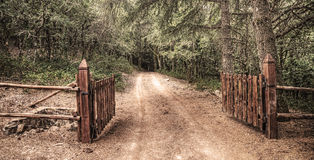 Open gate in Burgos forest Royalty Free Stock Photography