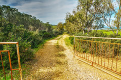 Open gate in the countryside Royalty Free Stock Image