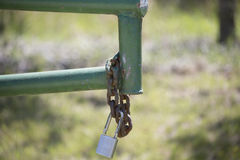 Open Gate. With a rusted chain and lock hanging from it Stock Photography