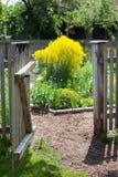 Open gate to a secret garden Royalty Free Stock Photo