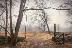 Open gate into the Woods. Scenic view of an open gate in a local park in early Spring on a foggy day royalty free stock photo