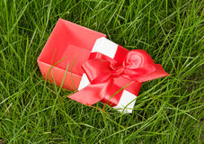 Open gift box on green grass Stock Image