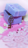Open gift box with a key. Open gift box. Shallow depth of field Royalty Free Stock Image