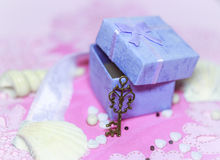 Open gift box with a key. Open gift box. Shallow depth of field Royalty Free Stock Photography