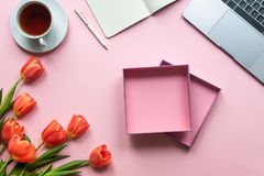 Open gift box on pink background with laptop, flowers and cup of tea royalty free stock images