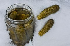 An open glass jar with green canned cucumbers in white snow. An open glass jar with green canned cucumbers in a snowdrift Royalty Free Stock Images
