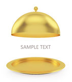 Open gold tray on a white background Stock Image