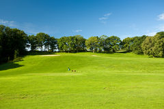 Open golf landscape. Seaside golf landscape in Molle, Sweden. There's sea behind the trees brimming the golf course. The sky is typical seaside sky with light Royalty Free Stock Images